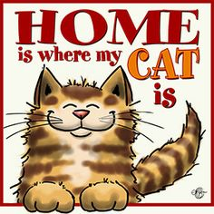 Gifts for cat lovers design HOME IS WHERE MY CAT IS section