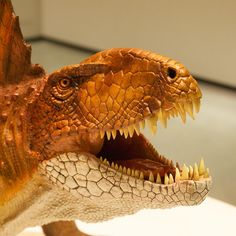 HMNS member Ed Truitt's Flickr photo set of our new Hall of Paleontology is AHHH-MAZING!