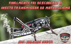 Finally it was discovered the transmitting insect motorcycling. PS: Thanks insect.