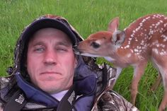 Oh, Hey, This Baby Deer Is Going to Make You Cry -- The Cut