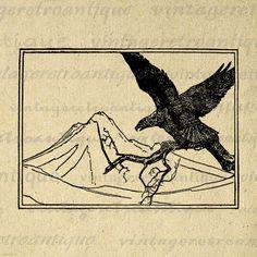 Digital Printable Soaring Eagle Image Bird by VintageRetroAntique