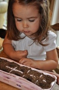 Egg Carton Gardening with Your Kids