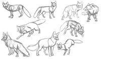 Tutorials-Basic Sketching favourites by digitaleevee on DeviantArt
