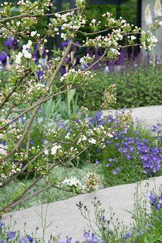 Daily Telegraph Garden 2009