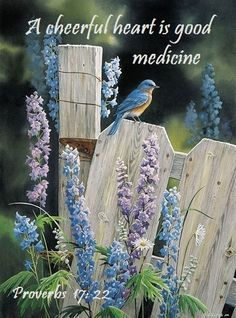 PROVERBS 17:22 (ESV) ~ A cheerful heart is good medicine, but a broken spirit saps a person's strength.