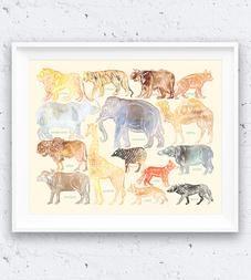 Animal Identification Art Print, White Line