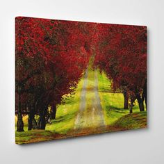 Canvasprints.io | Red Trees Autumn Forest - #canvasprintsio - Low cost, high quality canvas prints made in London UK from just £13.99. You're sure to find inspiration in our collection. Ask about our photo to canvas option too, it's super simple. Canvas prints on wall / flower and floral canvas art