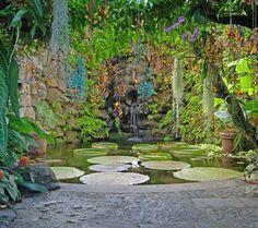 "Giardini ""La Mortella"".Ischia,Italy."