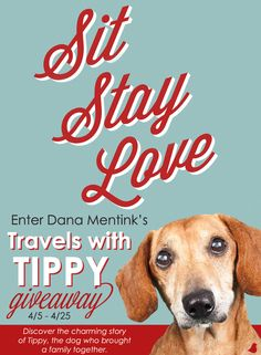 What do you get when you add one abrasive professional athlete, a quirky out-of-work schoolteacher, and an overweight geriatric dog? A lesson in love—Tippy style—in Dana Mentink's new book, Sit, Stay, Love.