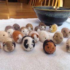 Guinea Pig Needle Felted Pocket Pet Miniature Birthday Valentines Day Lovinclaydolls Lisa Haldeman Easter by lovinclaydolls on Etsy https://www.etsy.com/listing/217712104/guinea-pig-needle-felted-pocket-pet