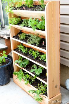 DIY Vertical Garden with Drip Watering System Create a DIY vertical garden for the perfect small space garden solution. This cedar vertical garden has a lot of space to grow your favorite herbs and plants. And the built in drip watering system