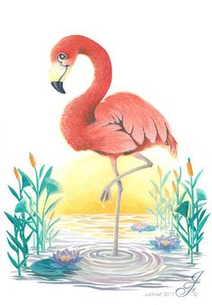 portfolio Illustrateur jeunesse, Illustrator painting tales and sweet animals for anybody who kept their inner child. Here are illustrations for children books, postcards but also music. Pink Sunset, Pictures To Paint, Flamingo, Drawings, Animals, Painting, Illustrations, Art, Ideas