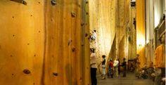 Rock Climbing...great fun