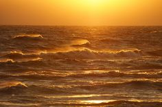 Wind, Water & Warmth