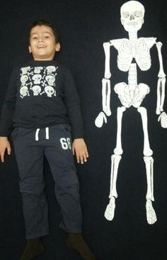 Rüzgar ım için montessori ev okulu(montessori homeschool): iskelet sistemi