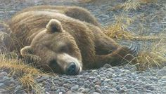 Artist: Robert Bateman, Title: Grizzly at Rest - click for larger image