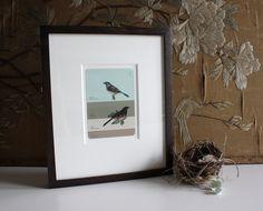 Gallery framed bird paint chip print - Bird's Nest
