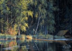 Juskevich Victor - 'Forest Lake'