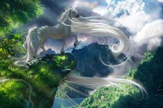 (Unicorn and the cliff