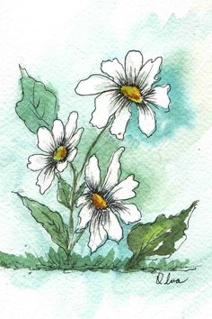 Image detail for -Gallery :: Watercolor Paintings - Small Format :: Pen_Ink_WC_Daisies