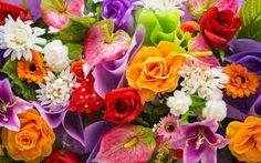 Risultati immagini per flowers