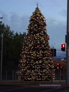 Christmas Tree Near The Bridge Mall Sturt Street Ballarat Christmas Characters Victoria Australia