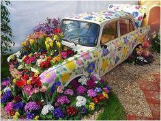 HAVE A NICE DAY!  Nice garden do you have! Thank you! RT BerneLarry @beatshoney @habibisilvia #flower #flowers #LoveFlowers#flowers#flower#flowerstagram#floral#flowerpower#floweroftheday#summer#spring#blooming#blooms#bloom#love #garden#gardens#keukenhof #keukenhof2017 #spring2017  #gardening#flowermagic#flowering#flowerlove#flowerlovers #blossom #Fall #Autumn #winter  #blossom #Happy #Day