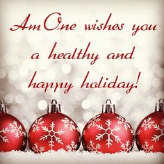 AmOne wishes you a healthy and happy holiday!