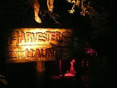 Harvesters Haunt Scare Zone #HOS #HalloweeninOrlando #BuschGardens