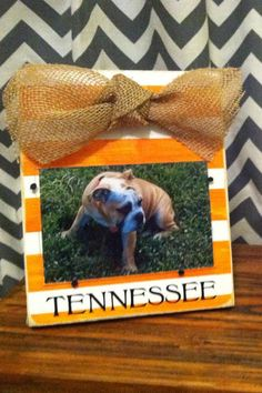 Cute Frame...I wouldn't put a picture of a bulldog in a TN frame though...seems like a conflicting idea :)
