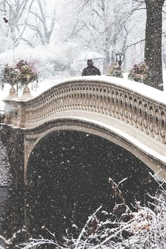 Snowing in Central Park, NYC by Kevin Kim