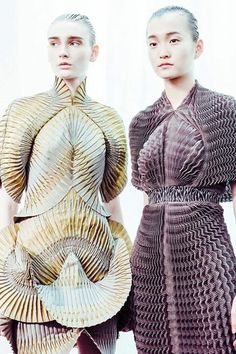 Iris van Hepern...innovative fabric manipulation