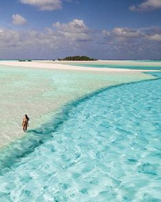 Would you visit this stunning place? 😍🤩🏊‍♀️🏊‍♂️ Aitutaki, Cook Islands Posted by . Vacation Deals, Best Vacations, Beach Pictures, Travel Pictures, Bangkok, Dubai, Road Trip, Destination Voyage, Destin Beach