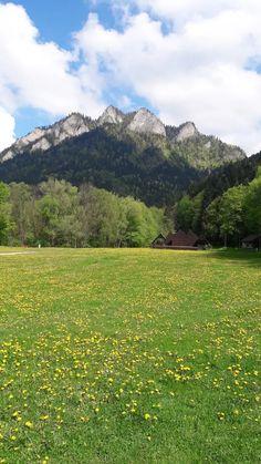 Trzy Korony wiosną #Pieniny Mountains, Nature, Travel, Naturaleza, Viajes, Destinations, Traveling, Trips, Nature Illustration