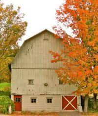 Barn on Mission Peninsula, MI
