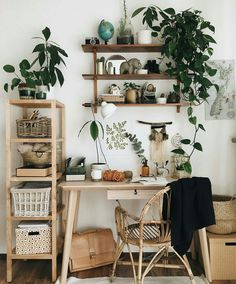 Desk workspace | open shelving and indoor plants