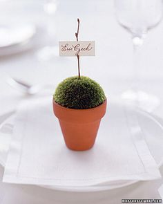 Both place card and favor, these tiny terra-cotta pots with domes of velvety moss are spare yet elegant against a pristine white table -- perfect…