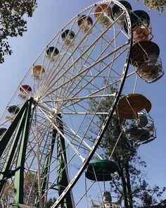 K A R I N A 🇦🇲 в Instagram: «Давай притворяться.» Ferris Wheel, Fair Grounds, Travel, Viajes, Traveling, Trips, Tourism, Big Wheel
