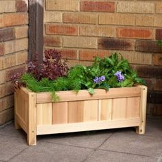 Small Rectangle Cedar Wood Knoxville Planter.  Build one for front porch.