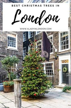 This guide to London Christmas trees will show you great Christmas trees in London, England. If you want London Christmas tree decorations or a London themed Christmas tree, it's perfect inspiration for you. #christmas #london #christmastree Christmas In Britain, London Christmas, Cool Christmas Trees, Christmas Travel, Christmas Tree Themes, Giant Tree, Christmas Photography, London England, Trip Planning