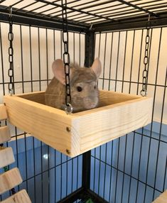Would be cool to figure out a way to build this for ferrets. Not too sure about using wood since pine and cedar can release their essential oils which are toxin for ferrets. Diy Chinchilla Toys, Cage Chinchilla, Chinchillas, Pet Rat Cages, Rat Cage Diy, Diy Rat Toys, Rat Cage Accessories, Mouse Cage, Small Animal Cage
