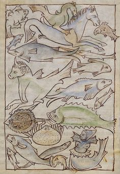 Northumberland Bestiary, London ca. 1250-1260 (LA, The J. Paul Getty Museum, Ms. 100, fol. 48r)