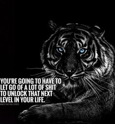 Positive Words, Positive Quotes, Motivational Quotes, Inspirational Quotes, Truth Quotes, Best Quotes, Love Quotes, Tiger Quotes, Trust No One