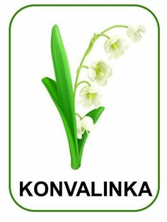 GYÖNGYVIRÁG Spring Activities, Activities For Kids, Preschool Crafts, Crafts For Kids, Elementary Science, Lily Of The Valley, Spring Crafts, Spring Flowers, Card Games