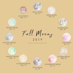 🌙 After this epic Blood Wolf Full Moon we just had we thought sharing this guide would be helpful for everyone who is interested in working… Sturgeon Moon, Astrology Calendar, Cold Moon, Strawberry Moons, Scorpio Moon, Pink Moon, Harvest Moon, Mind Body Soul, Mondays