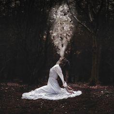 a stirring in the woods by Rosie Anne, via Flickr