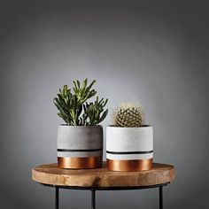 Atelier IDeco - Round indoor grey and rosegold cement flower pot, Hygge concrete planter pot, Modern gardening for potted cactus and succule - Black and copper concrete indoor planter for cactus / succulent planter / golden gift for housewarmi - Cement Flower Pots, Cement Planters, Indoor Planters, Diy Planters, Indoor Cactus, Concrete Planter Boxes, Concrete Pots, Concrete Crafts, Hygge