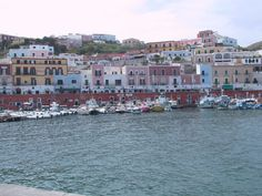 Ponza Island: a wild harbor in the middle of crystal clear waters.