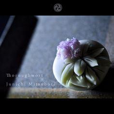 #一日一菓 #菓道 「 #藤袴 」 #wagashi of the Day #Thoroughwort #煉切 製 #針切り 本日は #秋の七草 の一つ藤袴です。 お陰様で毎日がとてもカラフルで刺激的で、 とても充実した日々を過ごさせて頂いております。 こんなにも鮮明に、世界は色づいている。 と感じた1日でした。 #JunichiMitsubori #和菓子 #一菓流 #幸福論 (電通)