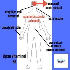 #vitamine #diete #nutriție #sanatate #sfaturipentrusanatate #medicina Teaser, Cancer, Health, Medicine, Tattoo, Vitamins, Salud, Health Care, Healthy